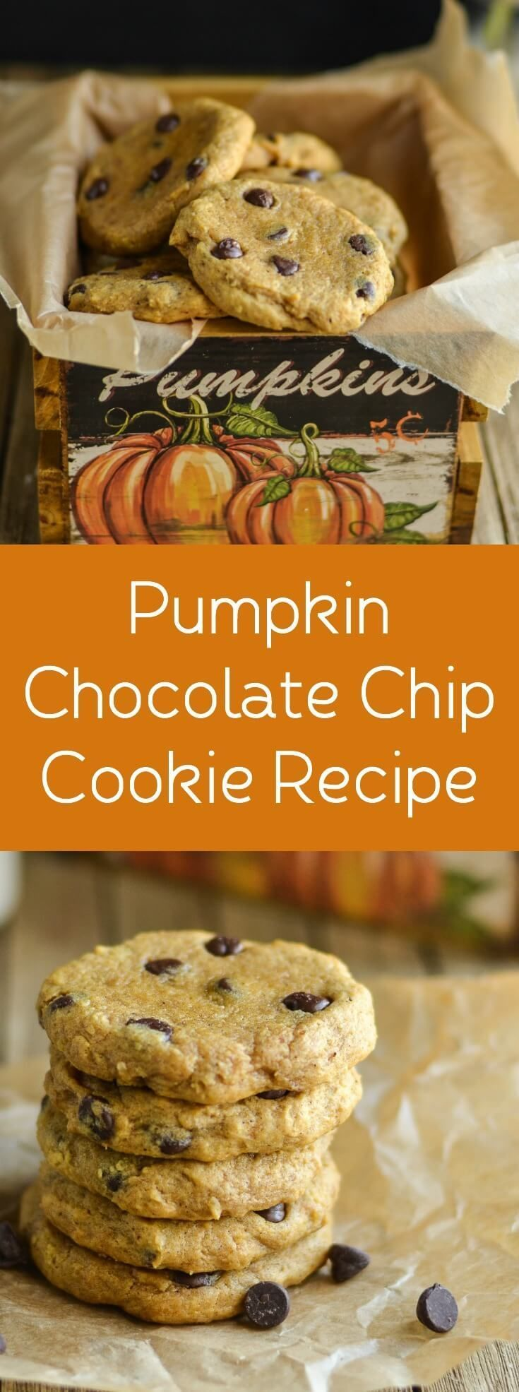 Indulge in your favorite fall flavor with this pumpkin chocolate chip cookie recipe! Soft, chewy, and delicious. via @diy_candy