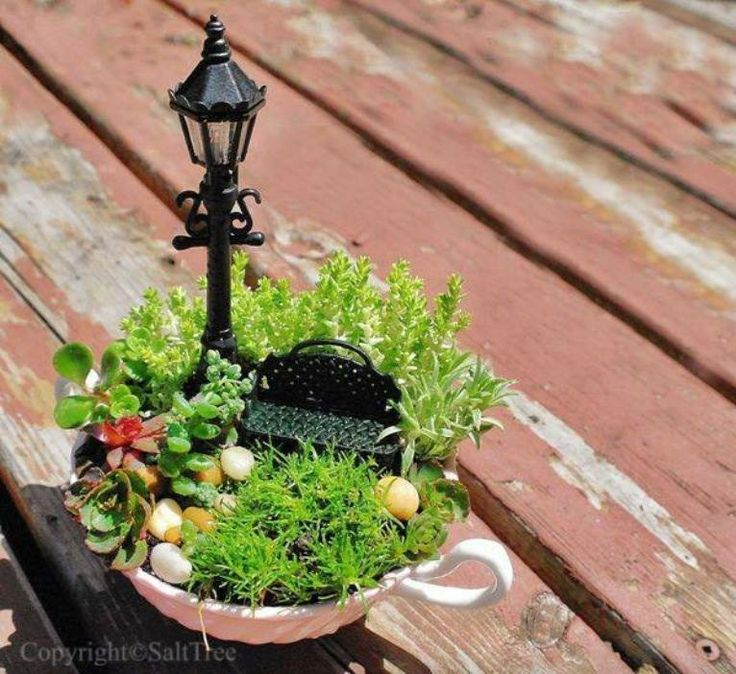 #4: Fairy Tale- Tea cup garden- We used miniature mason jars, tiny plants, and itty bitty plastic animals, army men, and weapons to create tiny fairy gardens/ terrariums. They turned out very cute. 7/18/15