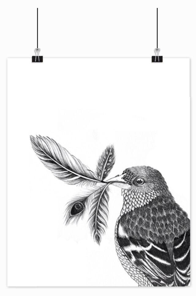 Illustration, 40x50 cm 250,- #bird #art #graphic #drawing #decoration