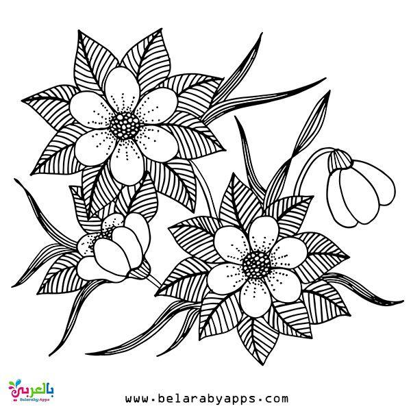 رسومات تلوين للبنات الكبار جاهزة للطباعة اوراق تلوين للبنات بالعربي نتعلم Lotus Flower Tattoo Floral Pattern Flower Tattoo