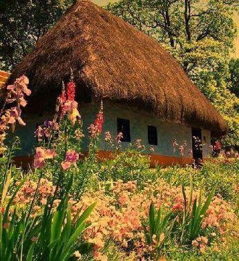 Casa satului romanesc de altadata