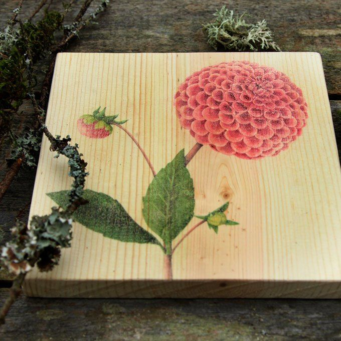 DIY Wood Wall Art With Easy Image Transfer