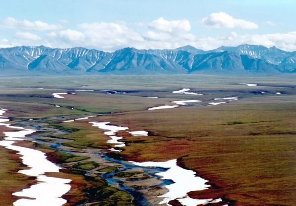 Arctic National Wildlife Refuge | Area 1002 of the Arctic National Wildlife Refuge coastal plain ...