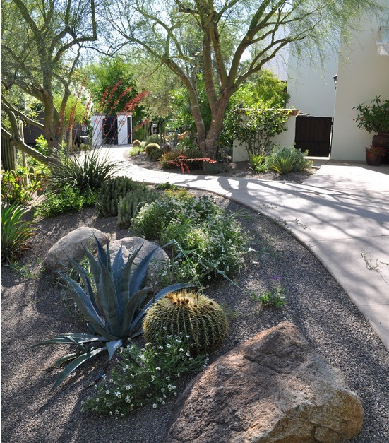 Top 70 Best Desert Landscaping Ideas: 23 Best Plants For Zone 7 Images On Pinterest