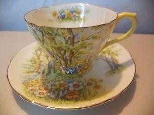 Vintage English Shelley Fine Bone China Daffodil Time Gold Gilt Tea Cup & Saucer  | eBay