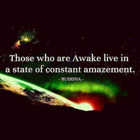 """""""Those who are awake live in a state of constant amazement."""" ~Buddha ★✪★"""