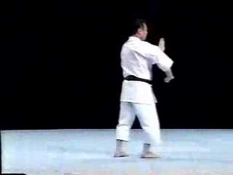 Seipai Shito Ryu