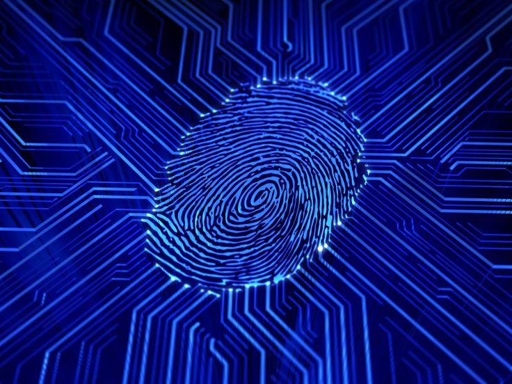 Fingerprint Biometric Locks