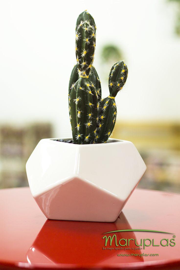 Según el Feng Shui, los cactus están relacionados con el éxito y el reconocimiento laboral, por lo que son muy apropiados para adornar nuestro lugar de trabajo. (Matera Dolomite ref. R1716)