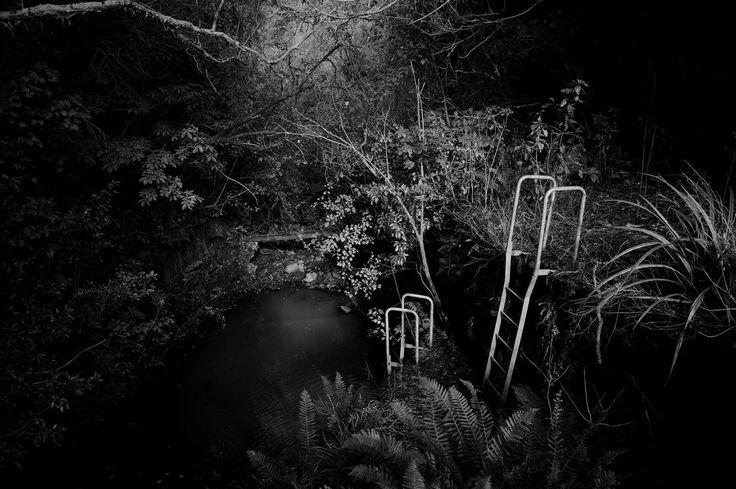 Ross Creek Reservoir - Dunedin - New Zealand | ©Michael McQueen | Photographer . . . . #Dunedin #NewZealand #Documentary #Photographer #documentaryphotography #streetphotography