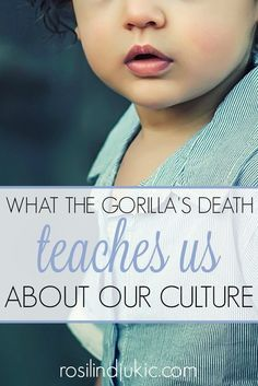 Here is what the gorilla's death has taught us about our culture and what happens to a culture when we remove God from society.