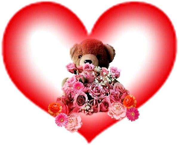 Imagenes De Amor Con Frases De Amor: Imagenes Peluches De Amor Png
