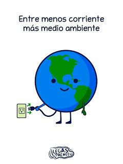 Llegas pacheco: Día mundial del medio ambiente