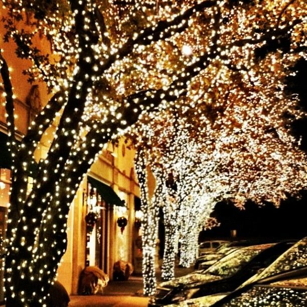 132 Best Christmas In Dallas Images On Pinterest