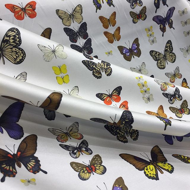 Another Beauty From Italy Butterfly Print On Silk This Would
