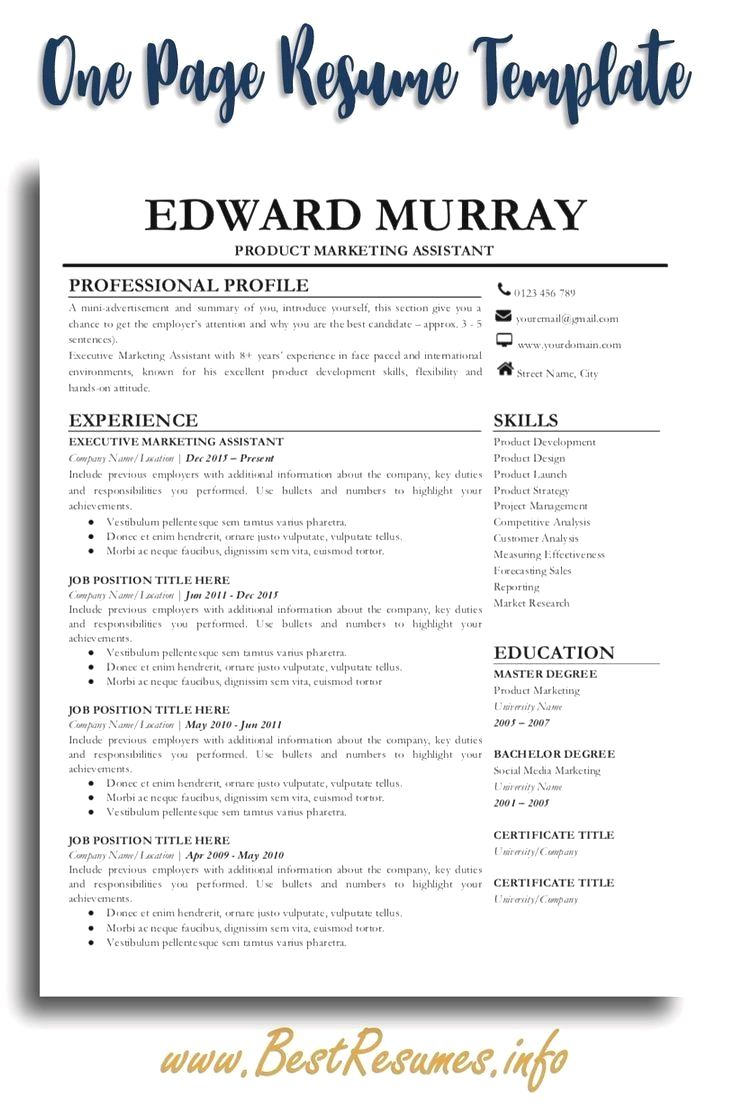 Professional Resume Example Instant Download 1 Page Resume Example For Ms Word In 2020 Teacher Resume Template Resume Template Professional One Page Resume Template