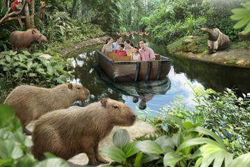 River Safari Experience in Singapore