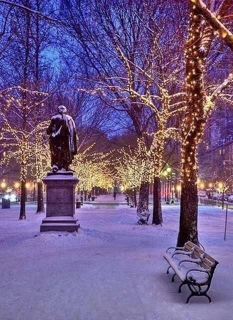 Christmas in Central Park New York...