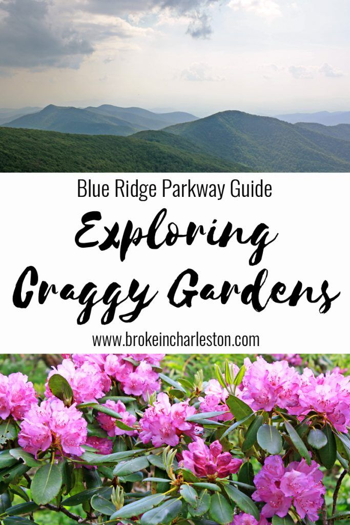 Favorite stops along the Blue Ridge Parkway: Craggy Gardens