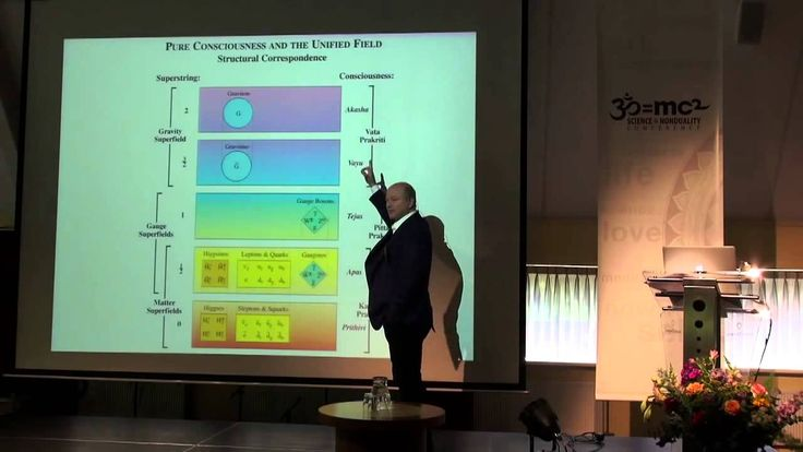 Consciousness is the Unified Field - quantum physicist John Hagelin. Wak...