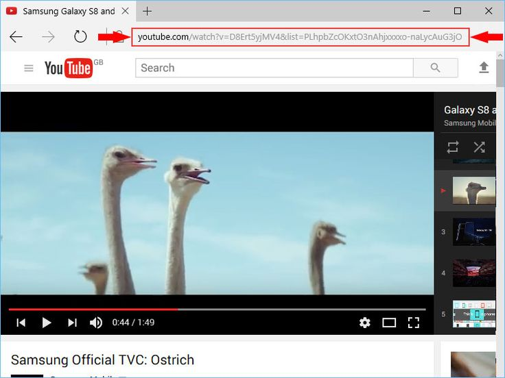 YouTube Playlist Search