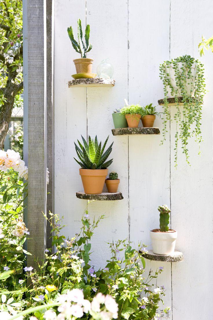Verticale plantenwand op mooiwatplantendoen.nl
