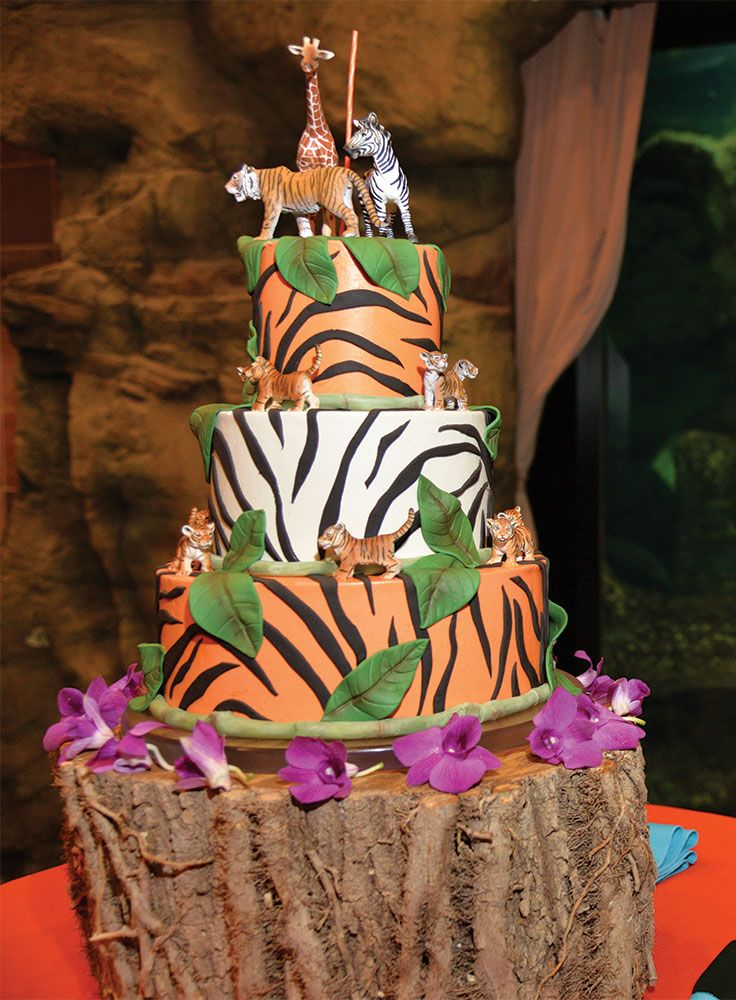 The Jungle Theme By St Louis Zoo