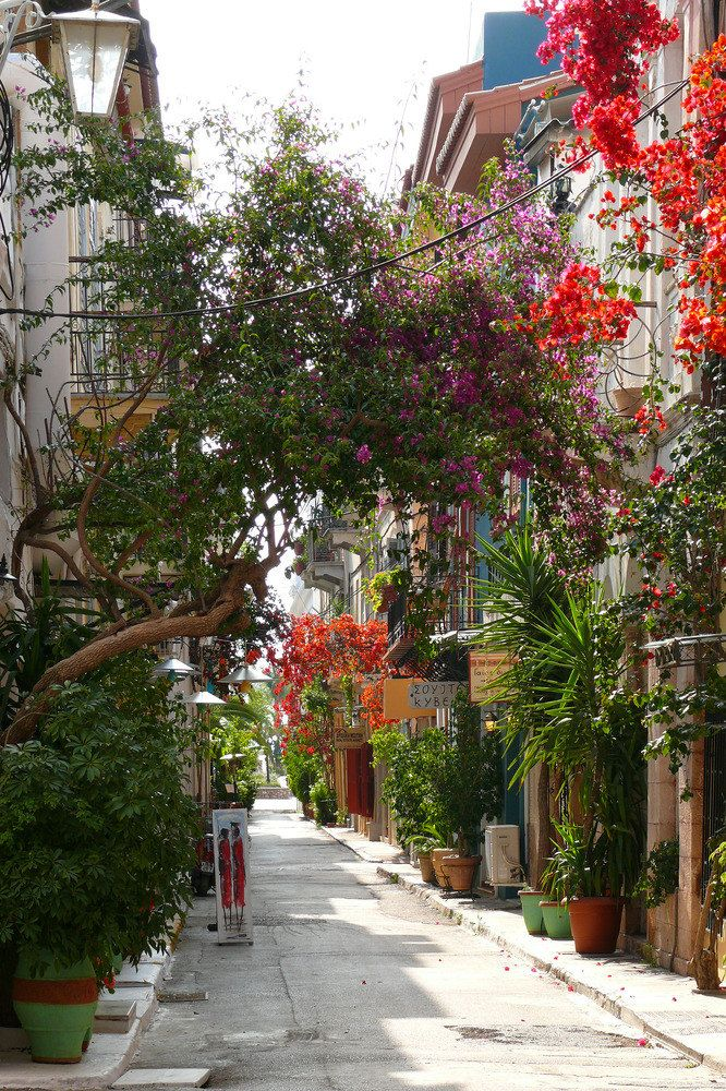 Street in Nafplion, Greece. Go to www.YourTravelVideos.com or just click on photo for home videos and much more on sites like this.