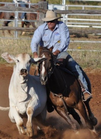 America's First Campdraft Competition Kiowa, CO #Kids #Events