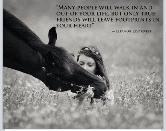 I'm so grateful for the footprints in my ♥️ and also for my friends that listen to me talking about my horses, not matter if they don't share the same passion.