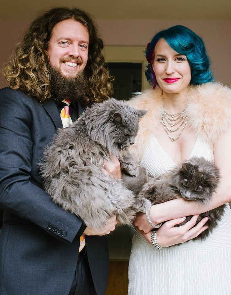134 best its a nice day for a cat wedding images on pinterest a cat wedding stylist see how this kitty chose the wedding jewelry junglespirit Images