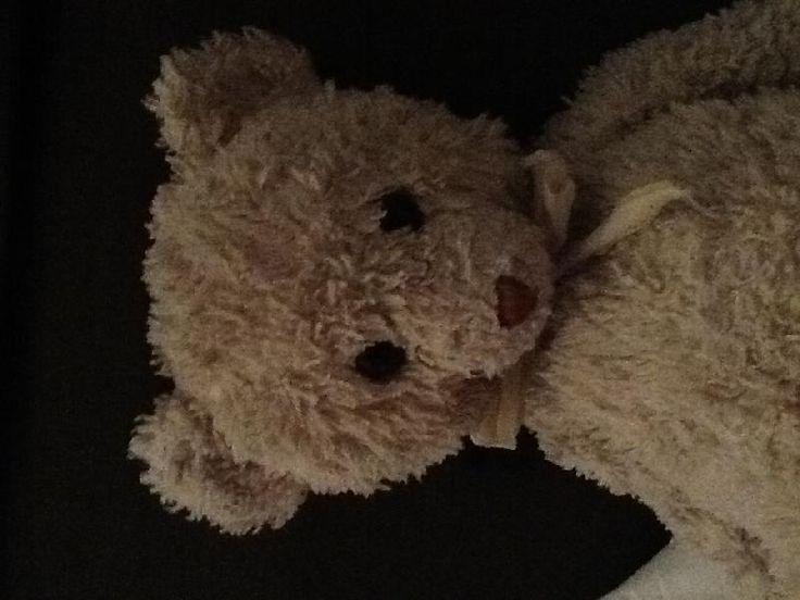 """Lost on 03 Feb. 2016 @ Woben centre parks . I am 11 years old and I lost my birth teddy which Ment a lot to me It had a botie and one strand was missing it had no label and had """"my first f.a.o teddy written on its right foot witch was Bally ... Visit: https://whiteboomerang.com/lostteddy/msg/j8bwk5 (Posted by Anna on 03 Feb. 2016)"""