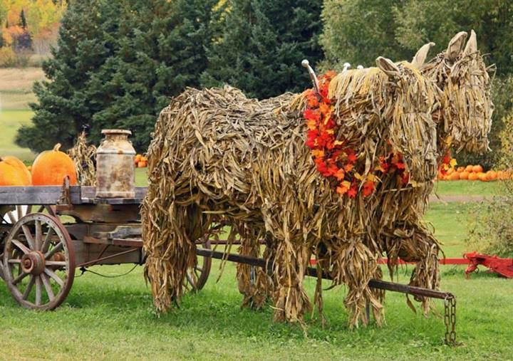 """Ghost horses"" made out of old corn stalks. I'm always so impressed with how many farms go all-out for Halloween. Some beautiful arts and crafts can take place from that!"
