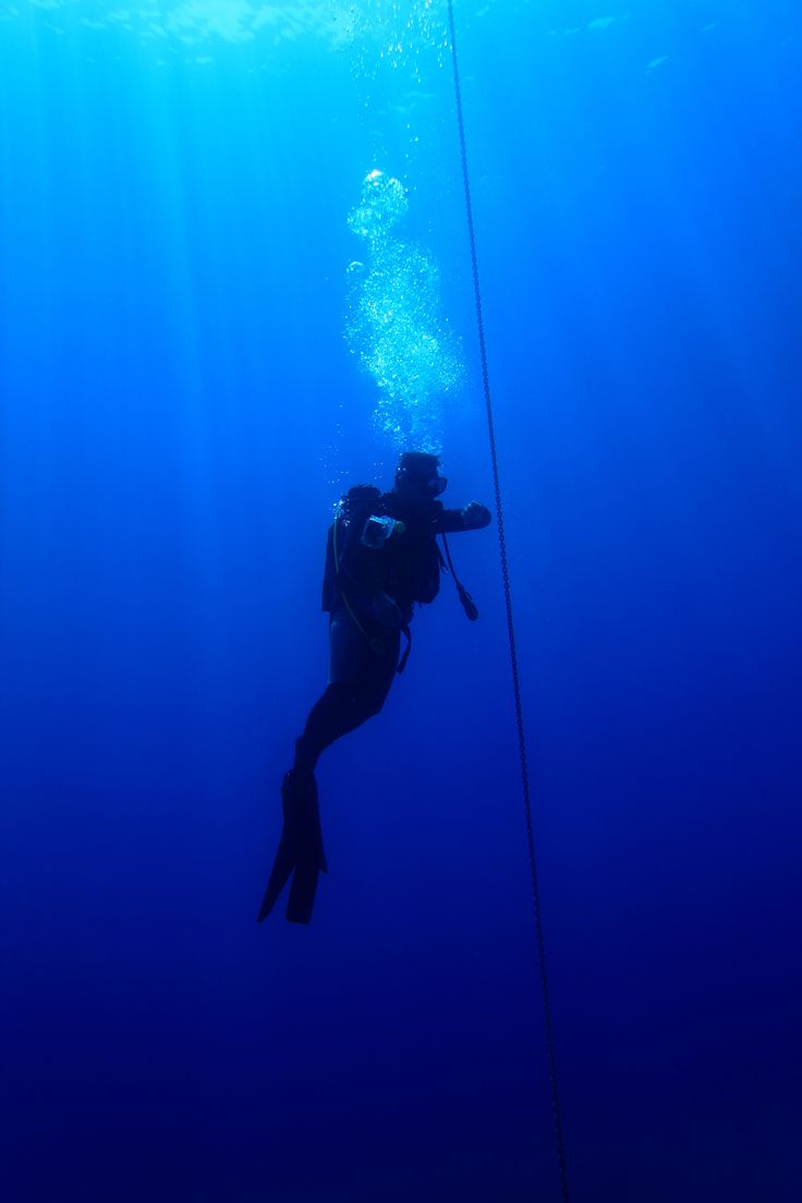 Azzurro Underwater Team Diver  in Athens Greece. http://www.dreamingreece.com/activity/azzurro-diving #scubadiving #greece #athens #dreamingreece #diving #dive #wateractivities #watersports #holidays #vacations