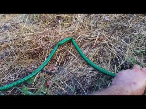 A Tiny Farm - The Nursery - watering some hidden veggirses that were just transplanted https://youtu.be/HFYgCegi8ms