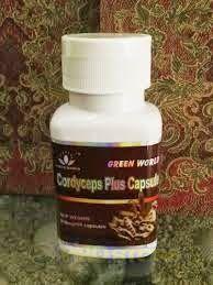 Cordyceps Plus Capsule obat herbal untuk segala jenis penyakit paru paru. Kualitas Terbaik, Harga Paling Murah, dan Tanpa Efek Samping sedikitpun. co