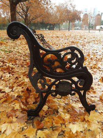 Banco en otoño, paisajes otoñales, colores anaranjados, proyecto de la a a la z