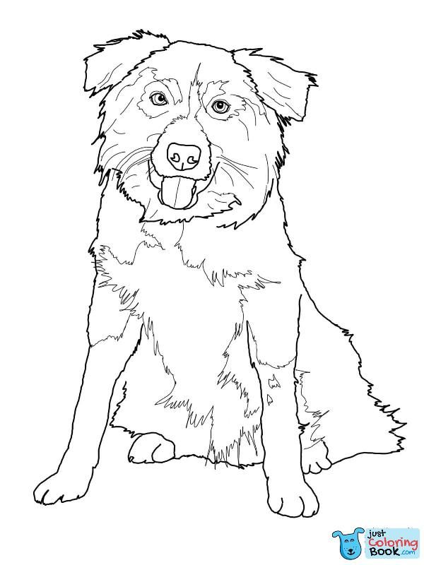 Border Collie Coloring Page Free Printable Coloring Pages Throughout Free Download Long Haired Collie Dog Coloring Page Puppy Coloring Pages Dog Coloring Book