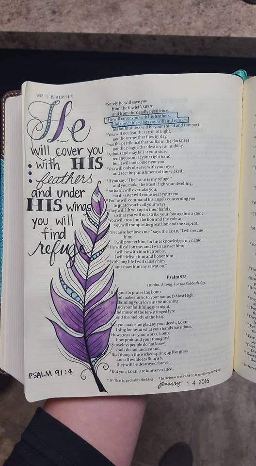 Psalm 91:4 feather