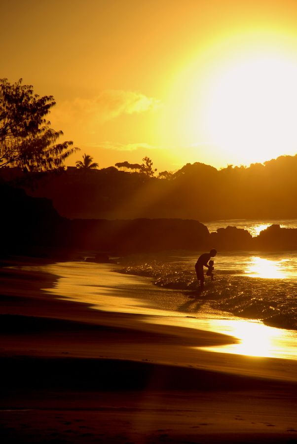63 Best Noosa Heads Images On Pinterest