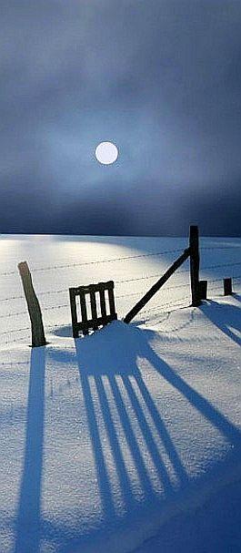 winter moonlight casting blue shadows on a snowy night