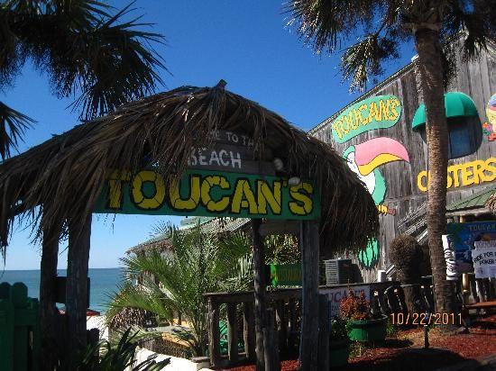 Toucans in Mexico Beach Florida