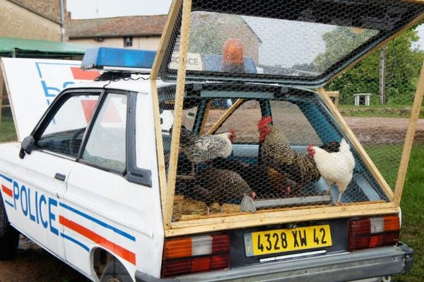 An artist repurposes a police car as a chicken coop