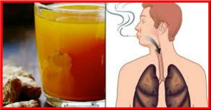 Bien que nous ayons tous conscience des effets nocifs que représentent le tabac pour la santé, certaines personnes ont encore du mal à se débarrasser de cette mauvaise habitude qui peut leur être fatale. Le tabagisme expose les poumons à d'importantes quantités de toxines qui, lorsqu'elle…
