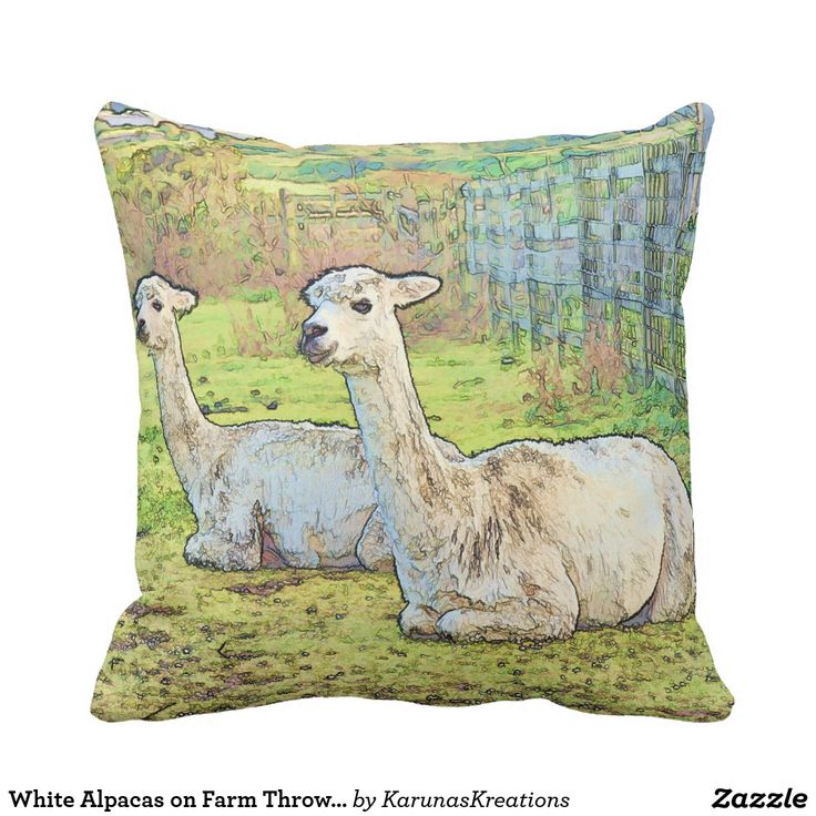 White Alpacas on Farm Throw Pillow
