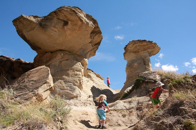 Wild About Dinosaur Provincial Park (Family Adventures in the Canadian Rockies)