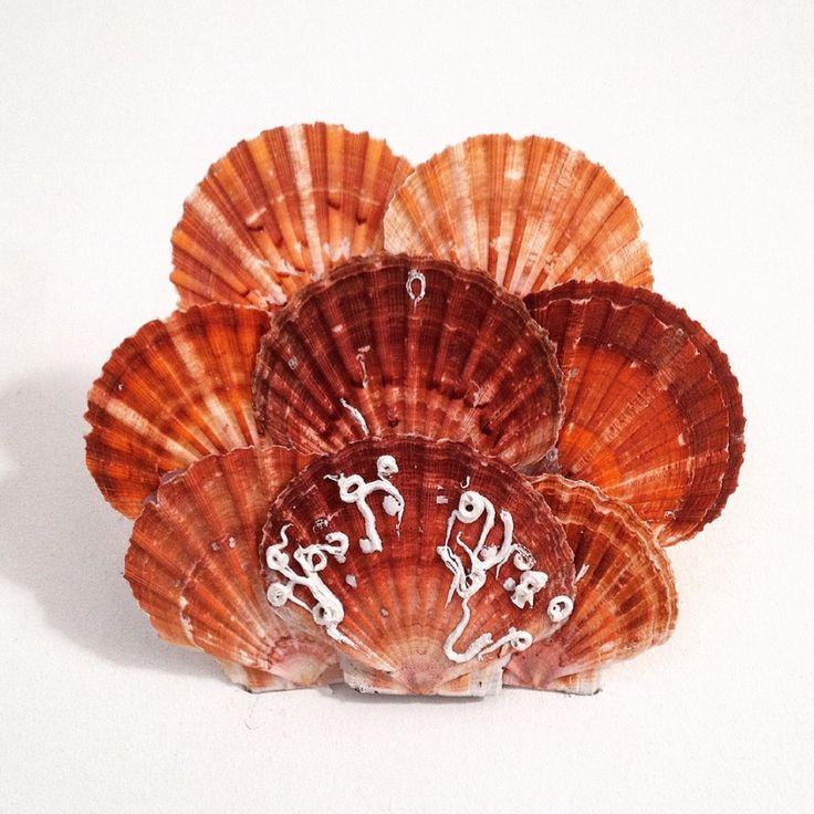 By Salamastra: lampada applique realizzata con un assemblaggio di conchiglie --- Applique wall sconce made with an assembly of sea shells