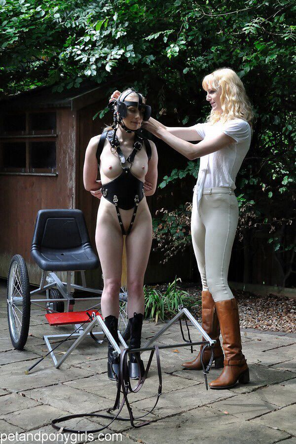 Erotic spanking stories pony play