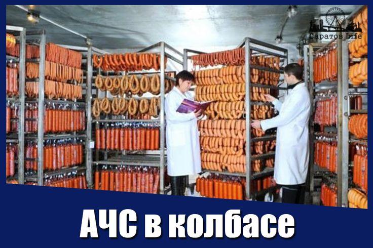 В энгельсской колбасе нашли вирус африканской чумы. Ветеринары ввели карантин на производстве.    http://nversia.ru/news/view/id/101421 #Саратов #СаратовLife