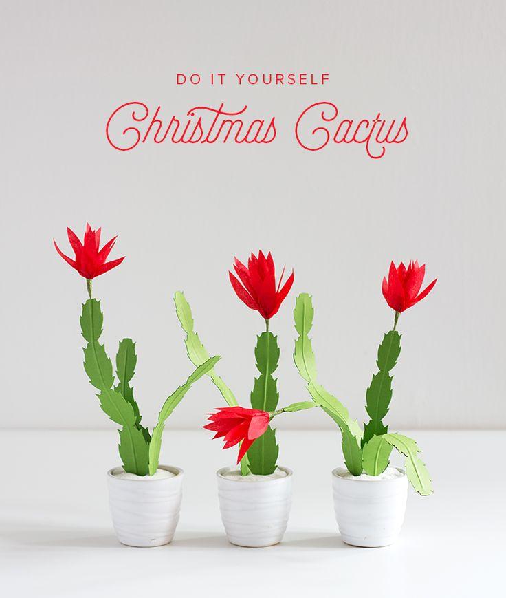 christmas cactus ideas